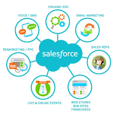 WebDComp Salesforce CRM integration